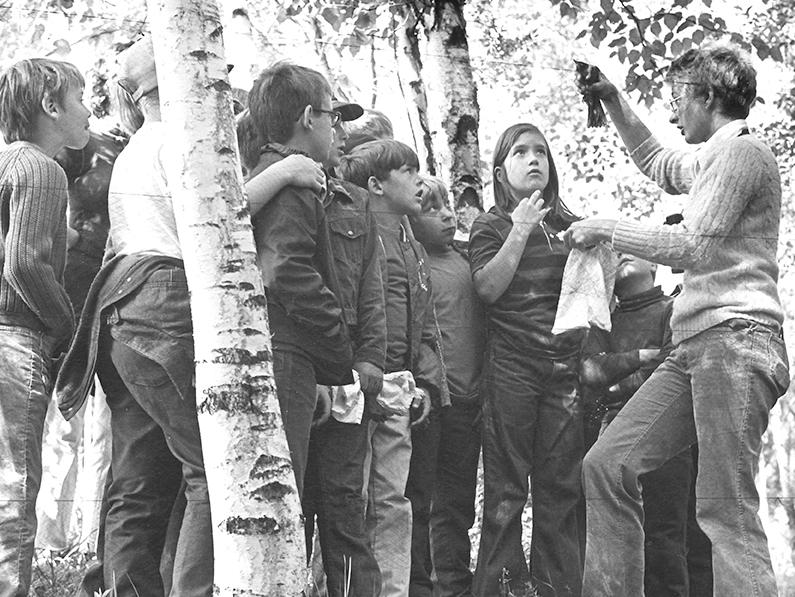 ELF Begins in 1973