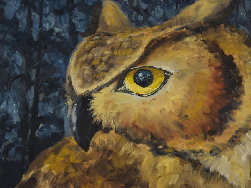Artwork Owl