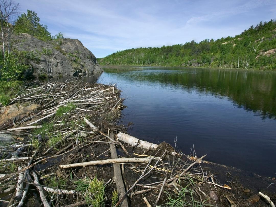 AtHome-Beaver Dam-1080x810
