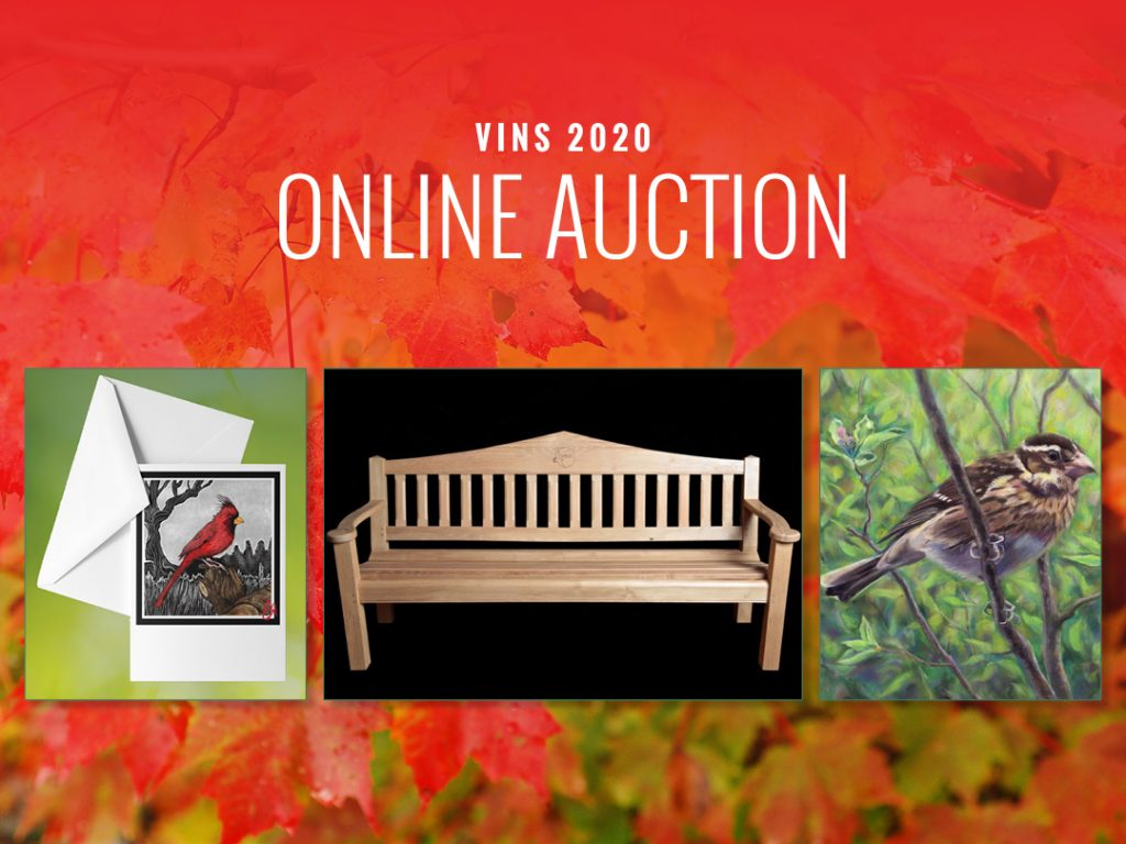 Online Auction