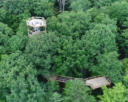 TreeHouse-2021-500x400
