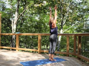 Yoga in the Canopy